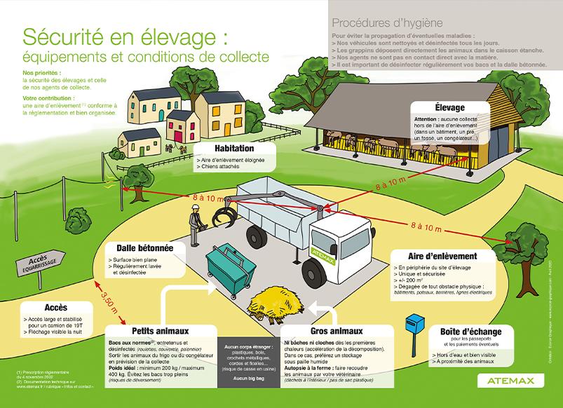 atemax-consignes-regles-dessin-explication-illustration-graphiste