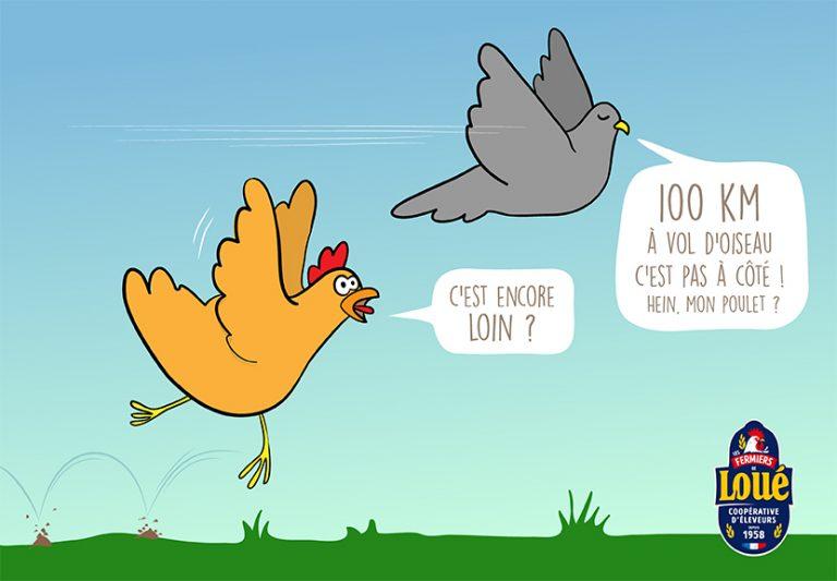 ecorce-graphique-loue-poulet-gag-dessin-post-reseau-sociaux-community-manager-facebook-drole-illustration